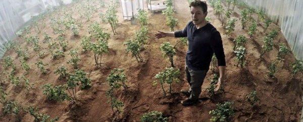 NASA实验证明,火星上真的可以种土豆